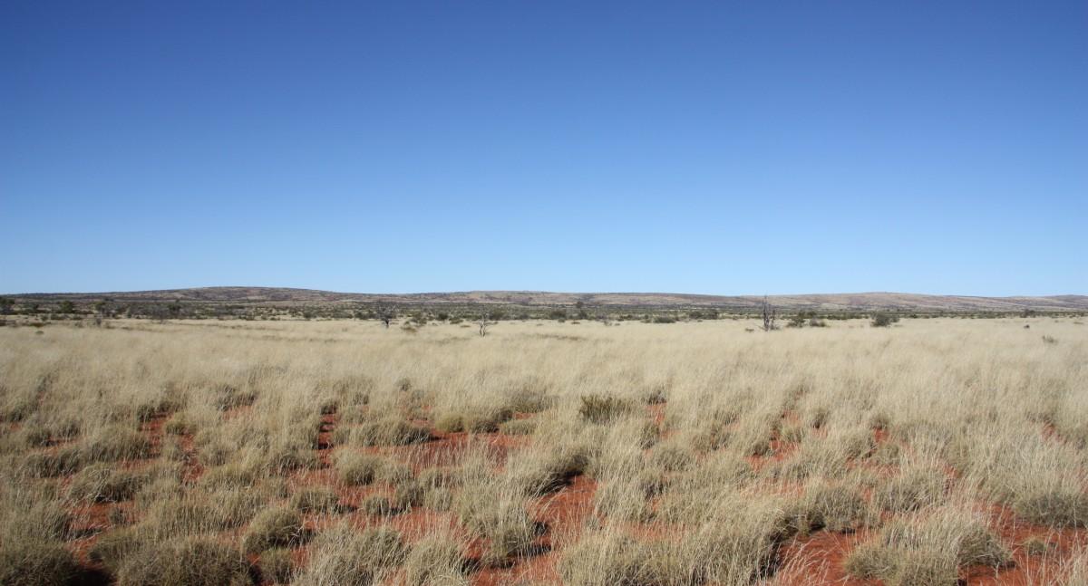 Central Desert Native Title Services Ltd
